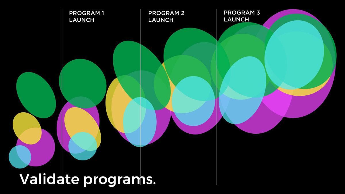 Validate programs